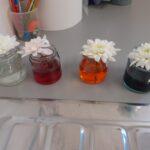 Flower Dye