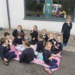 Ms. O Callaghan's Junior/Senior Infants